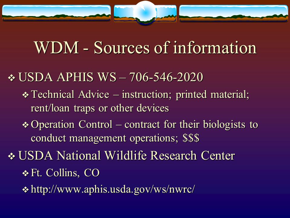 WDM - Sources of information