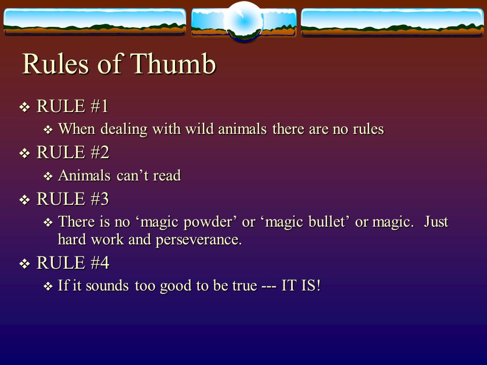 Rules of Thumb RULE #1 RULE #2 RULE #3 RULE #4