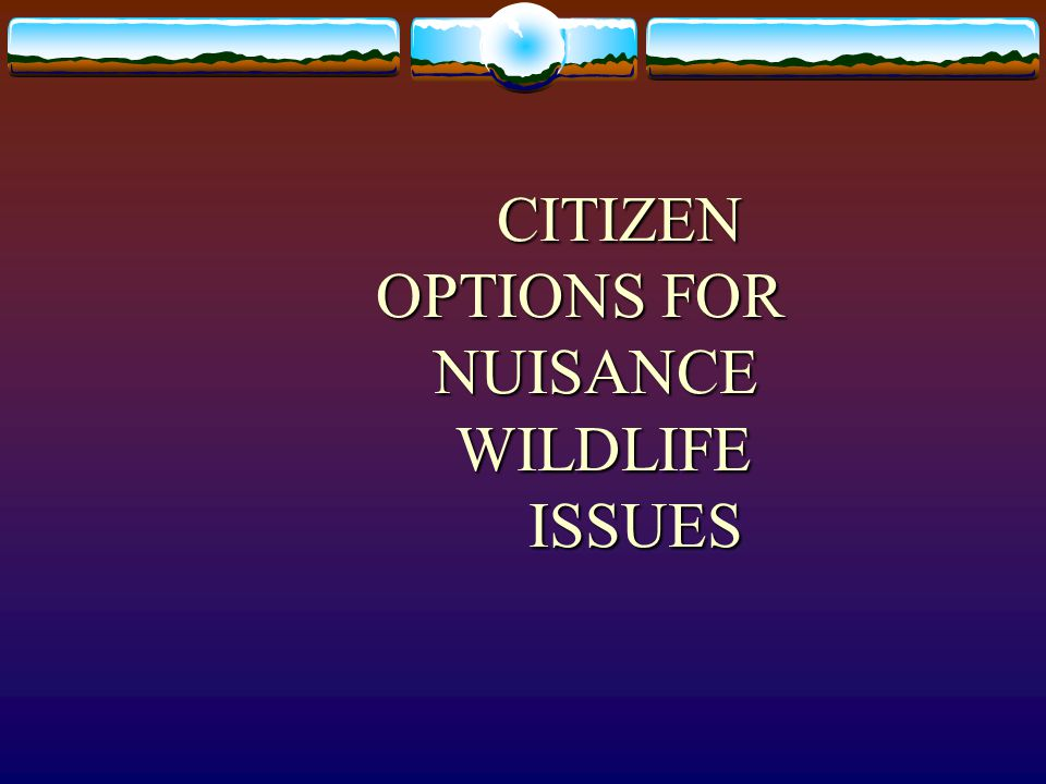 CITIZEN OPTIONS FOR NUISANCE WILDLIFE ISSUES