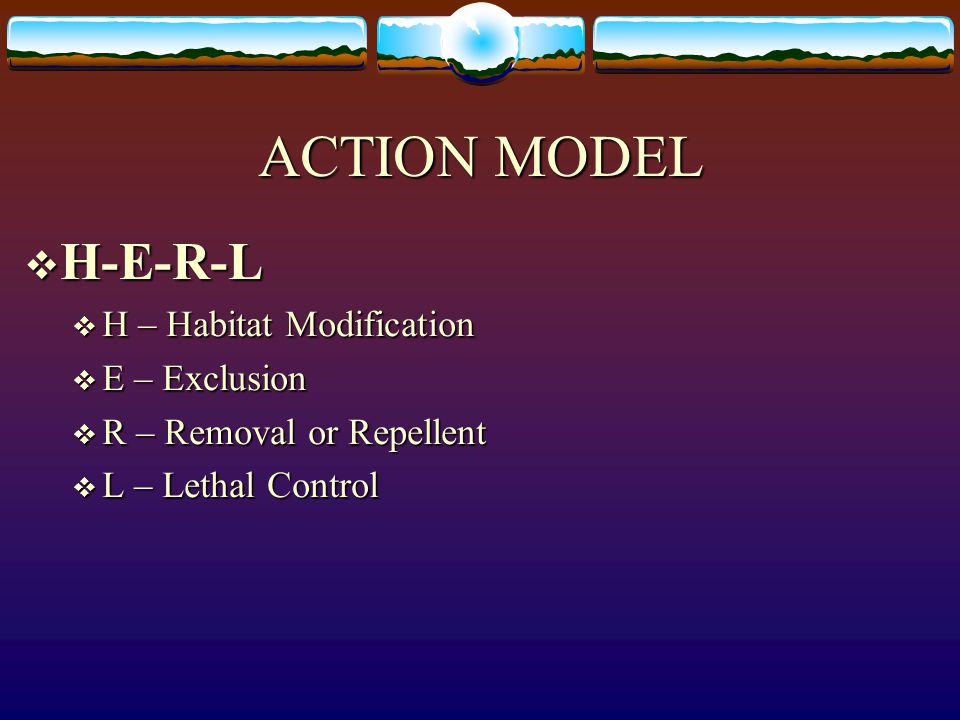 ACTION MODEL H-E-R-L H – Habitat Modification E – Exclusion