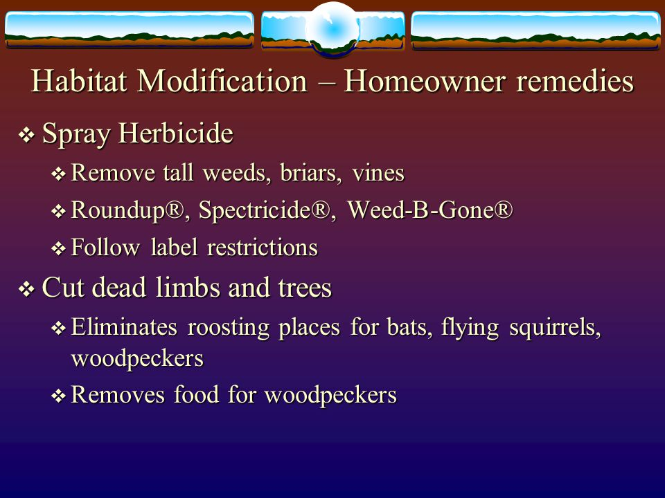 Habitat Modification – Homeowner remedies
