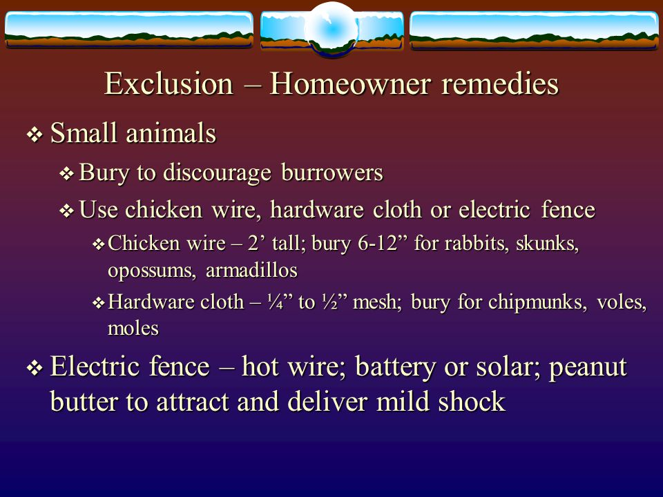Exclusion – Homeowner remedies