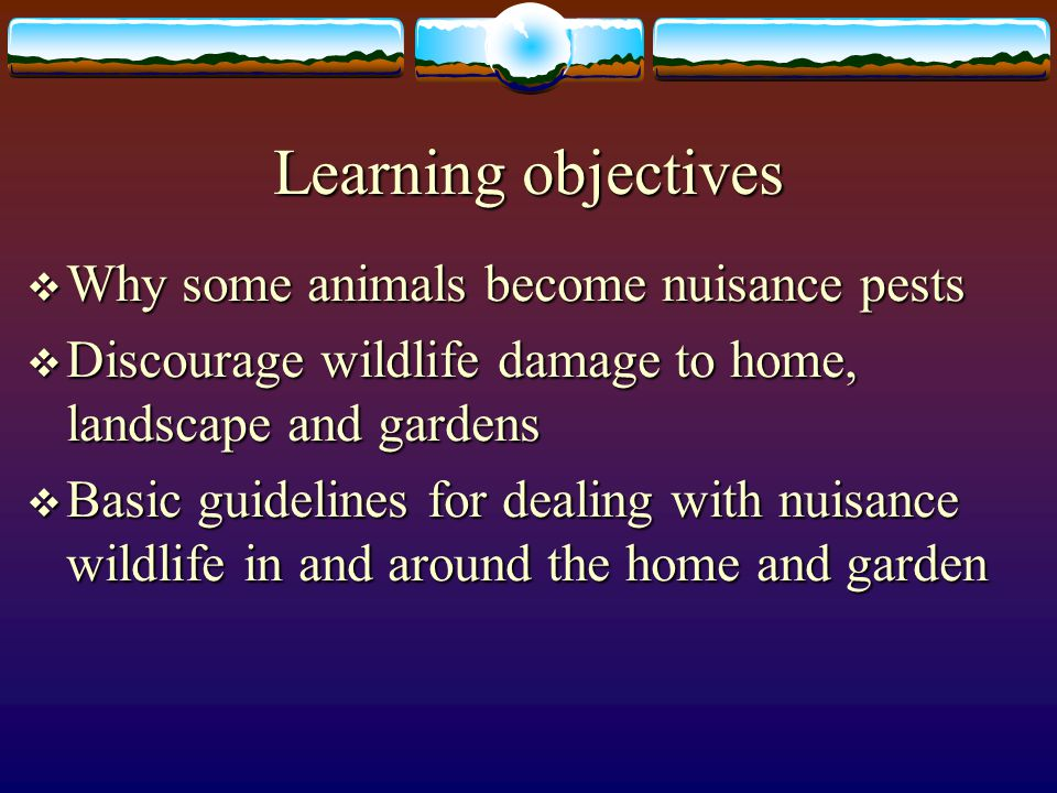 Learning objectives Why some animals become nuisance pests