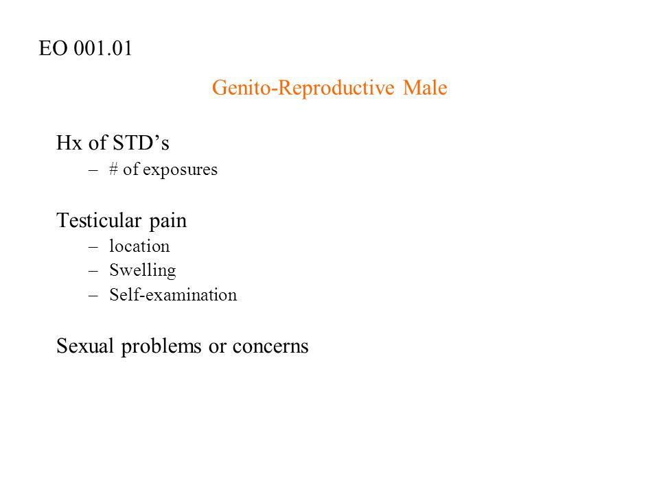 Genito-Reproductive Male