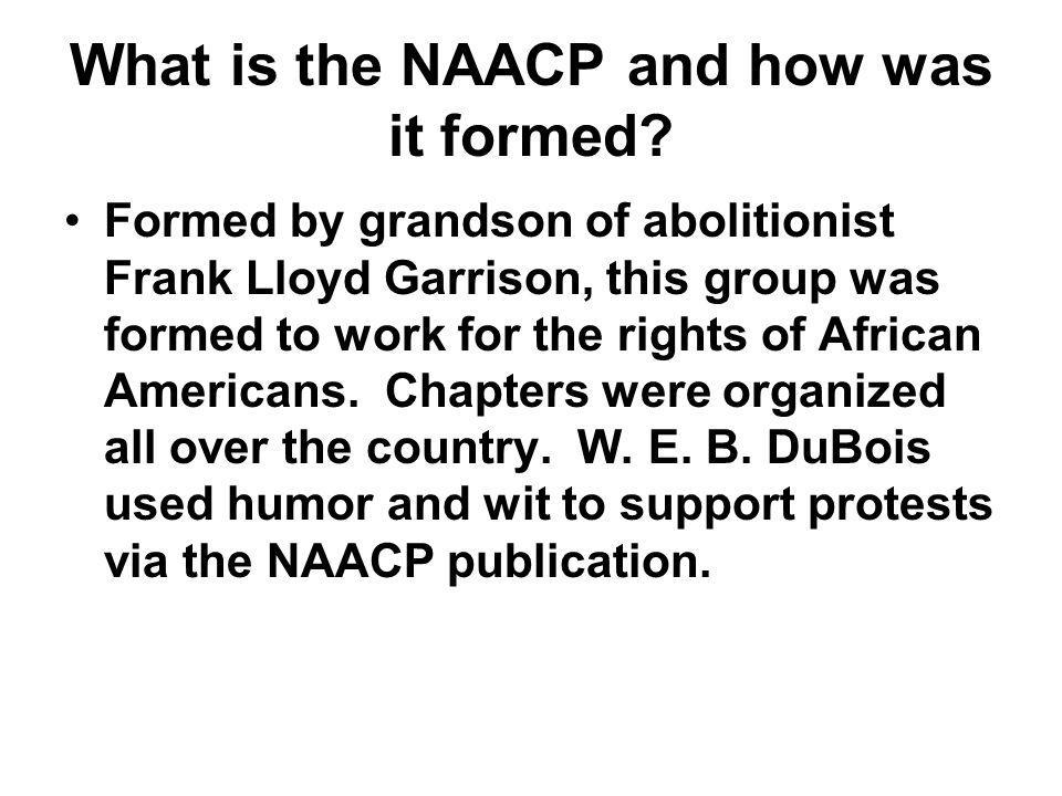What is the NAACP and how was it formed