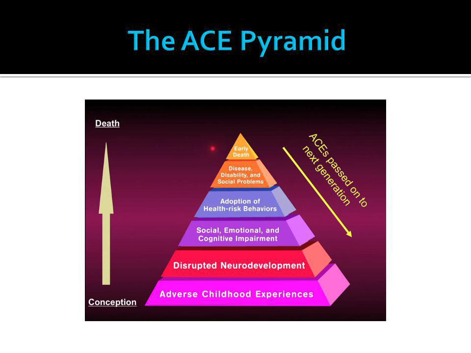 The ACE Pyramid
