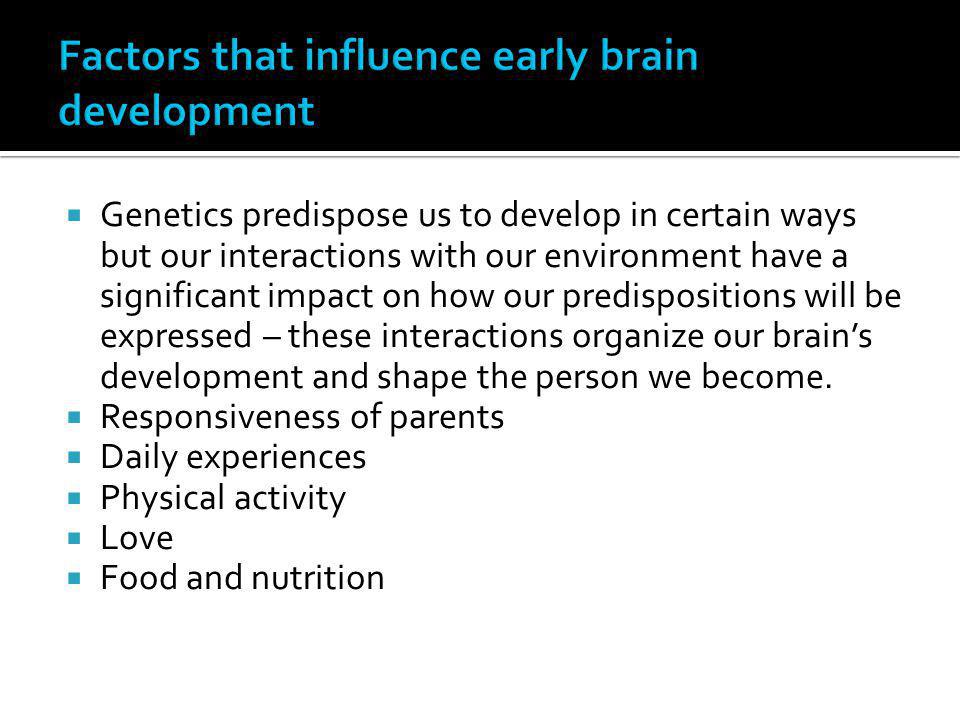 Factors that influence early brain development