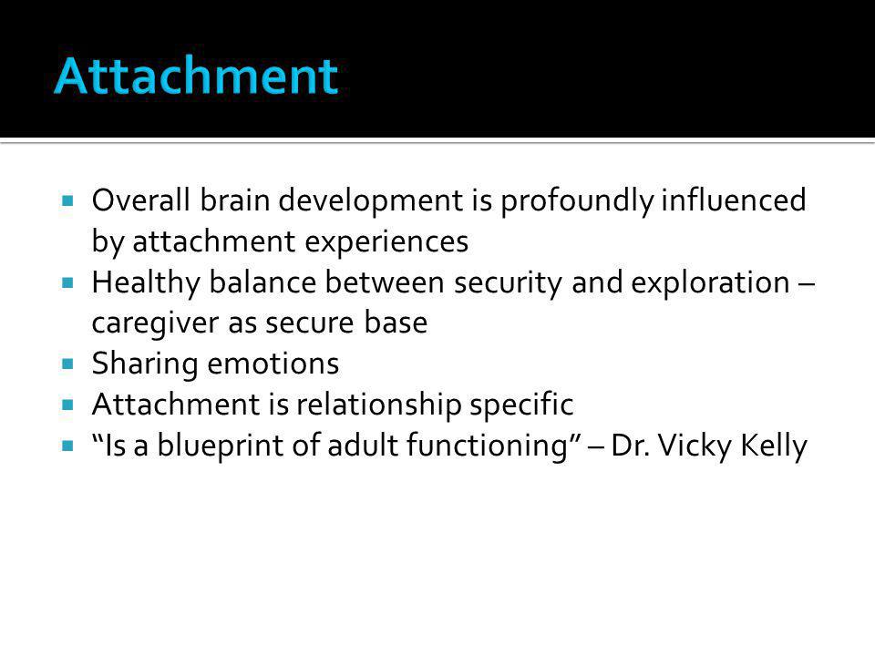 Attachment Overall brain development is profoundly influenced by attachment experiences.