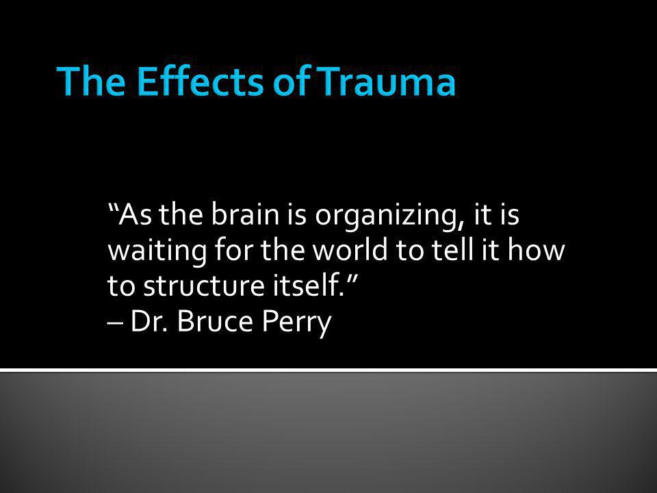 The Effects of Trauma As the brain is organizing, it is waiting for the world to tell it how to structure itself.