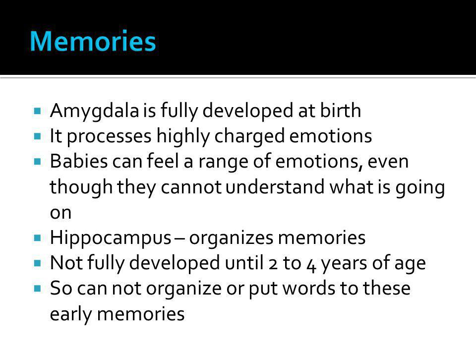 Memories Amygdala is fully developed at birth