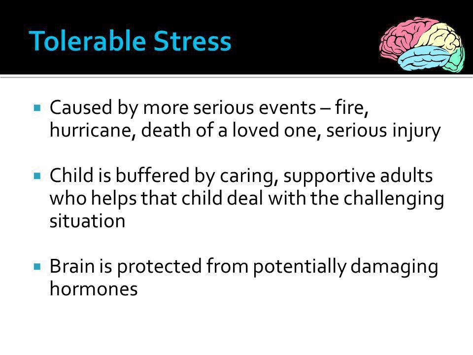 Tolerable Stress Caused by more serious events – fire, hurricane, death of a loved one, serious injury.