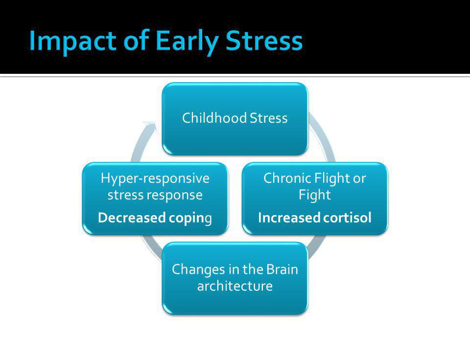 Impact of Early Stress Childhood Stress Chronic Flight or Fight