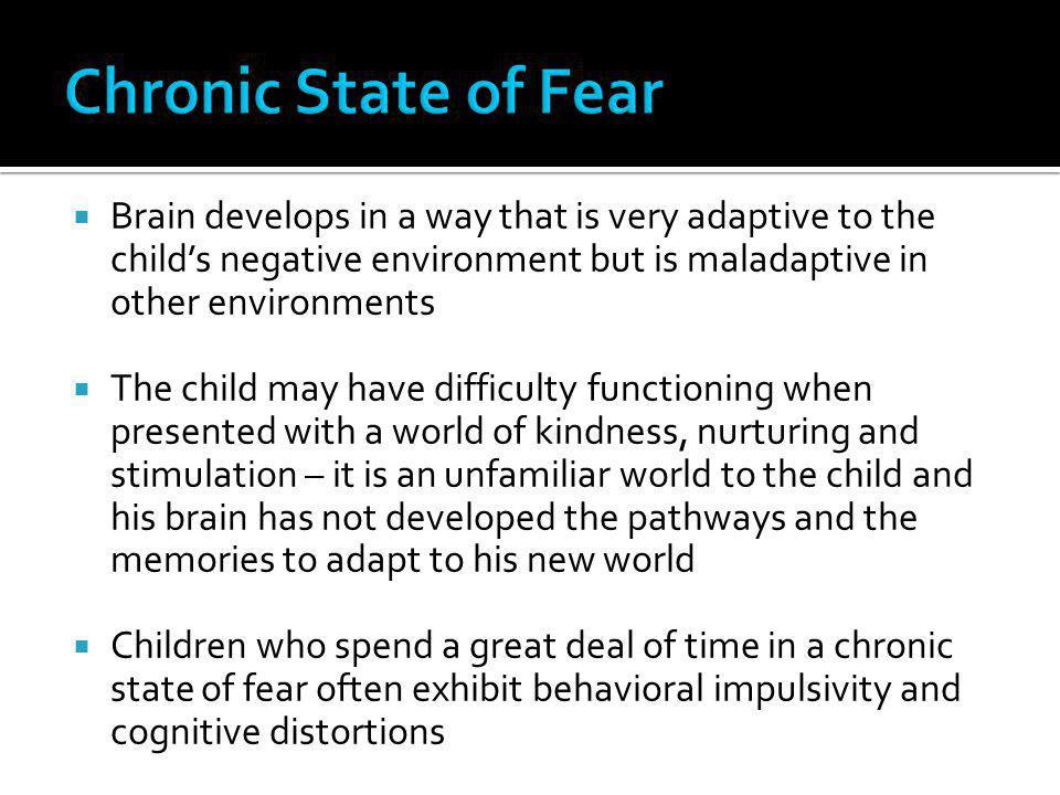 Chronic State of Fear Brain develops in a way that is very adaptive to the child's negative environment but is maladaptive in other environments.