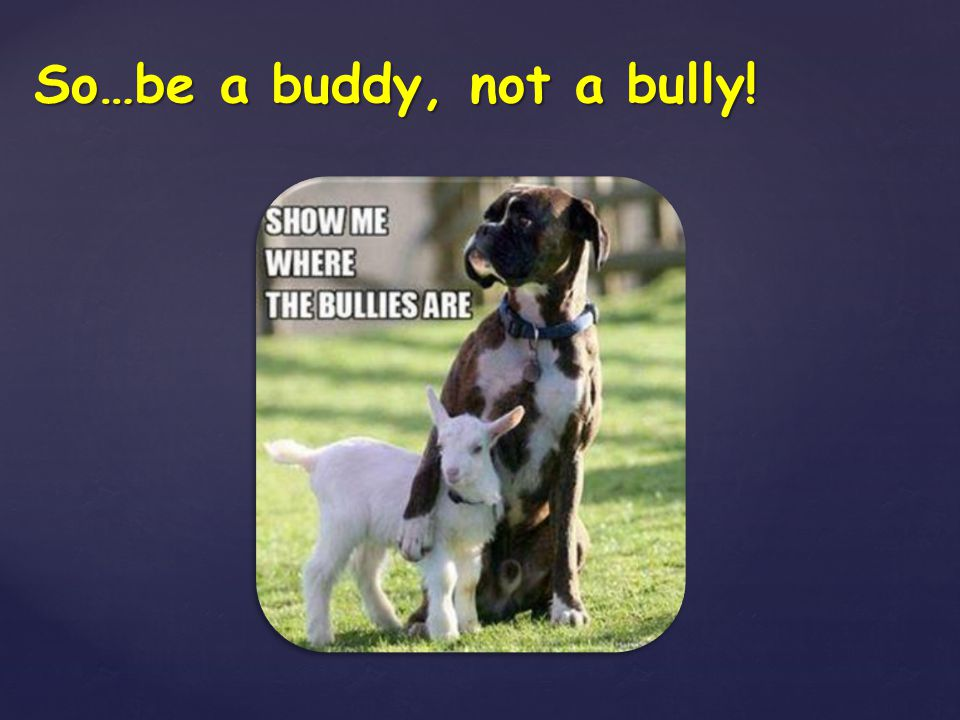 So…be a buddy, not a bully!