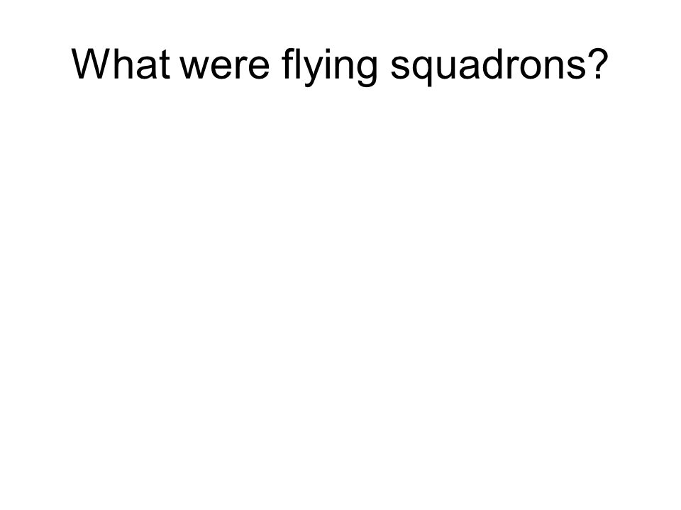 What were flying squadrons