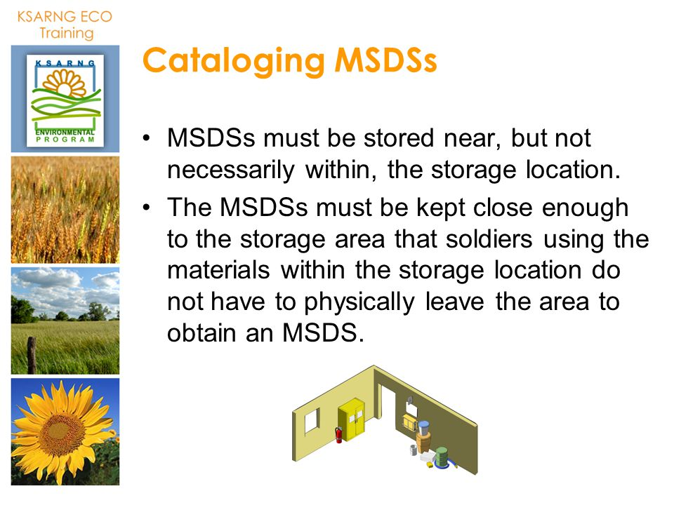 Cataloging MSDSs MSDSs must be stored near, but not necessarily within, the storage location.
