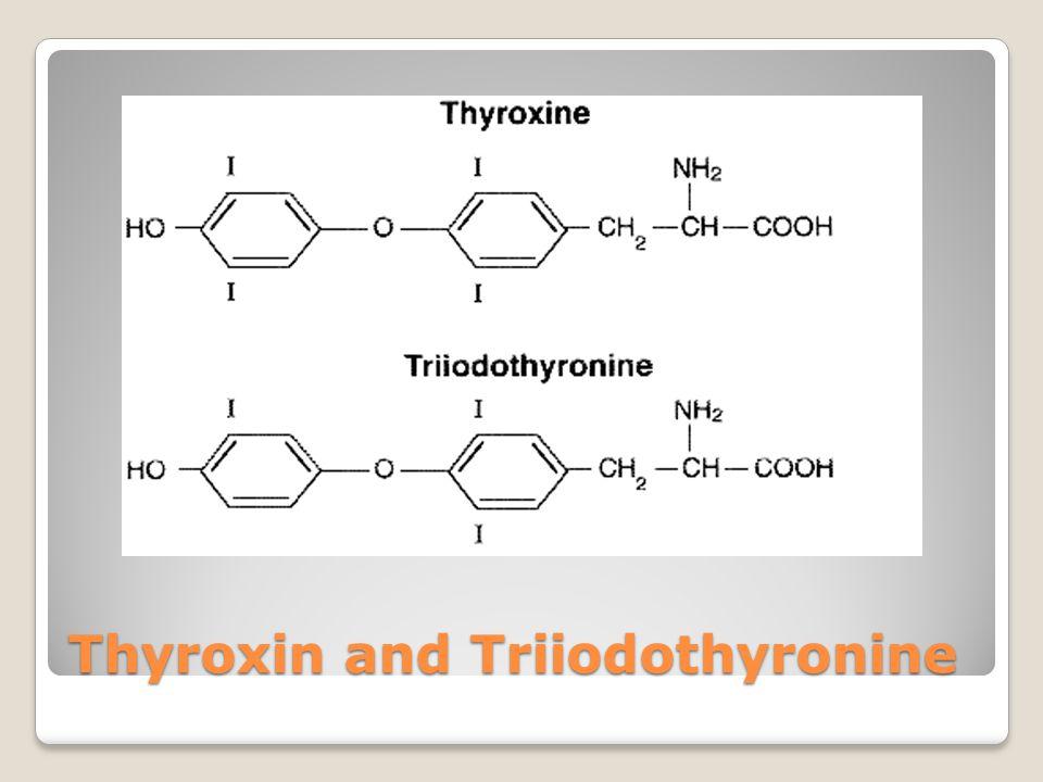 Thyroxin and Triiodothyronine