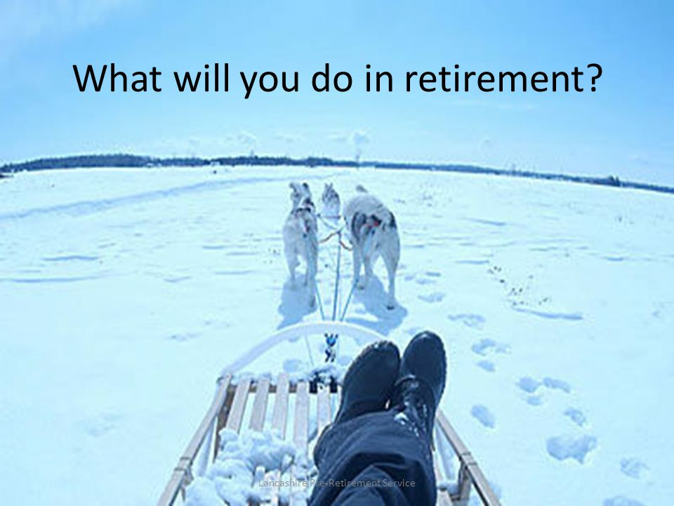 What will you do in retirement