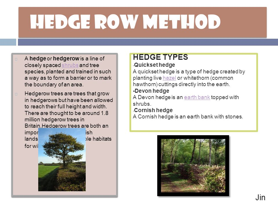 HEDGE ROW METHOD HEDGE TYPES Jin