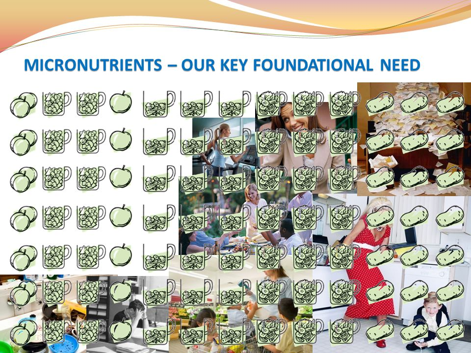 MICRONUTRIENTS – OUR KEY FOUNDATIONAL NEED