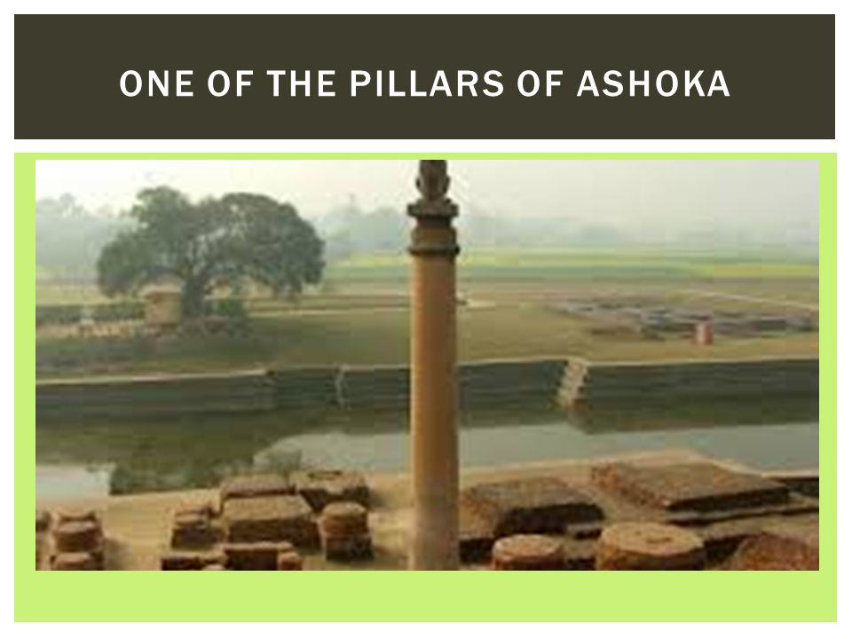 One of the pillars of Ashoka