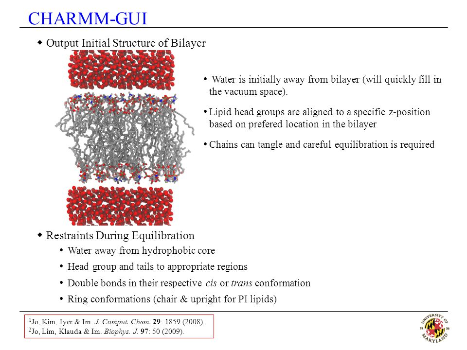 CHARMM-GUI Output Initial Structure of Bilayer
