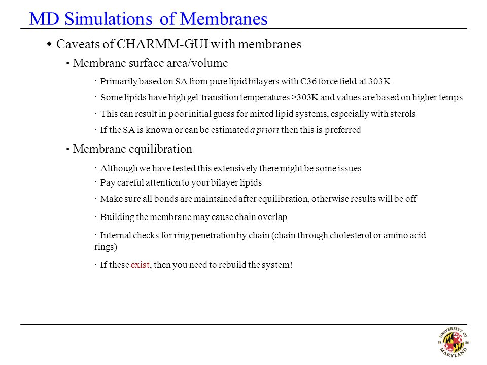 MD Simulations of Membranes