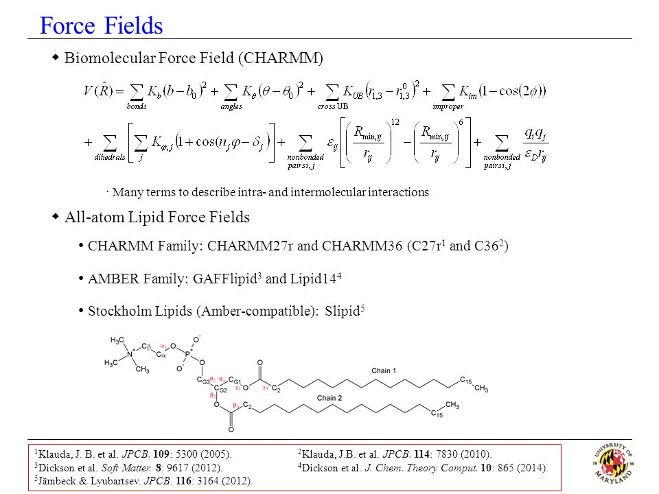 Force Fields Biomolecular Force Field (CHARMM)