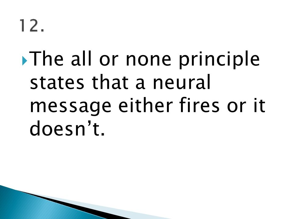 12. The all or none principle states that a neural message either fires or it doesn't.