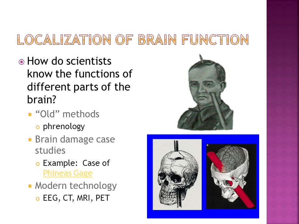 LOCALIZATION OF BRAIN FUNCTION