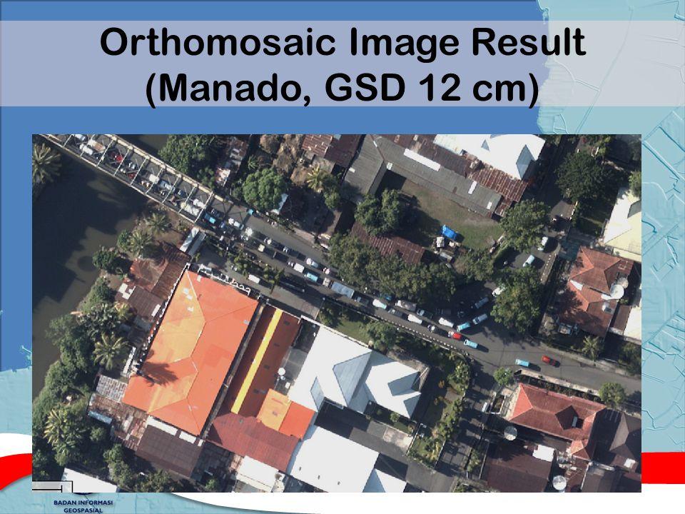 Orthomosaic Image Result (Manado, GSD 12 cm)