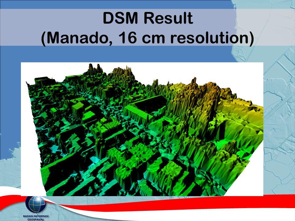 DSM Result (Manado, 16 cm resolution)