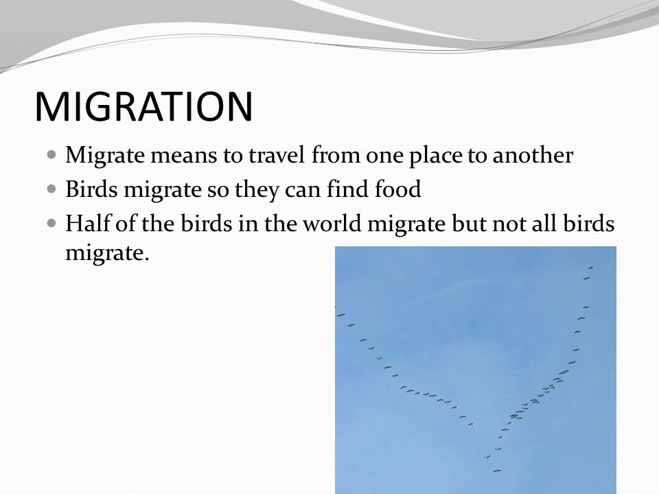 MIGRATION Migrate means to travel from one place to another