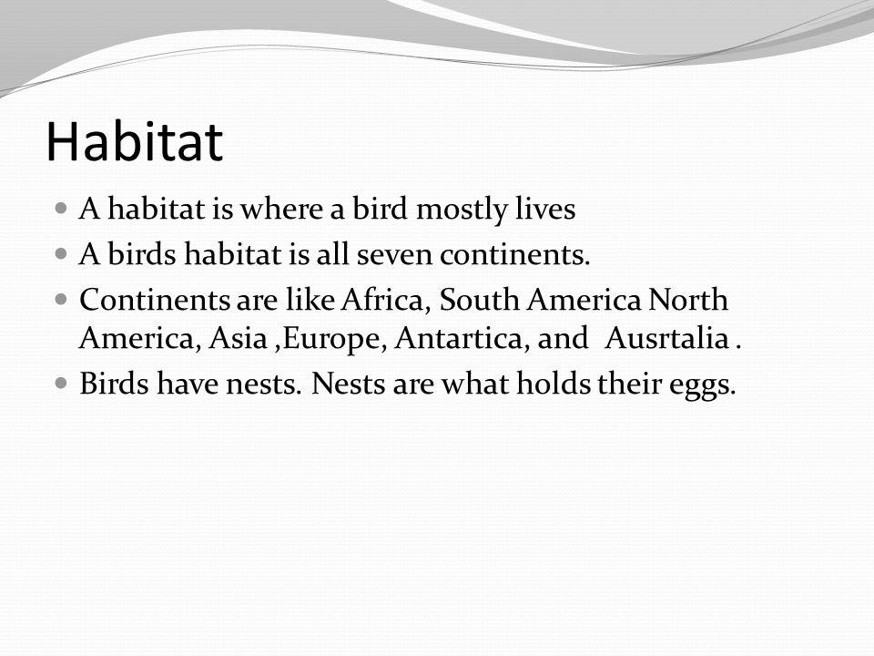 Habitat A habitat is where a bird mostly lives