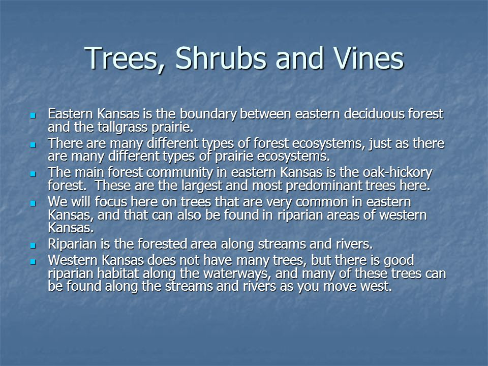 Trees, Shrubs and Vines Eastern Kansas is the boundary between eastern deciduous forest and the tallgrass prairie.