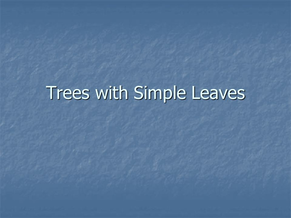 Trees with Simple Leaves