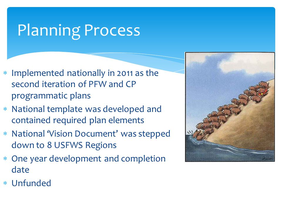 Planning Process Implemented nationally in 2011 as the second iteration of PFW and CP programmatic plans.
