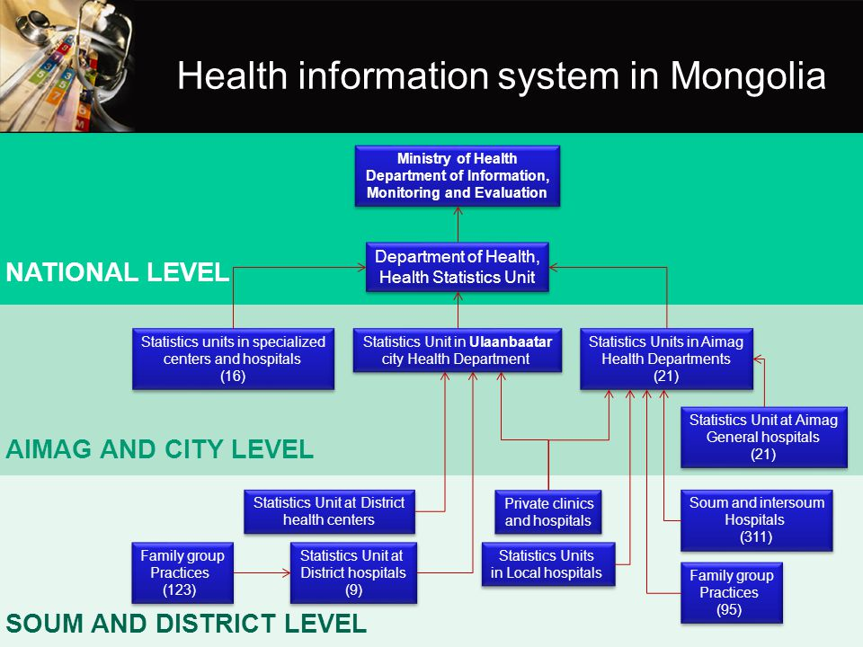 Health information system in Mongolia