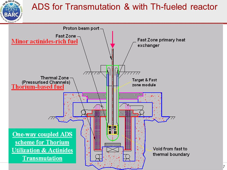 ADS for Transmutation & with Th-fueled reactor