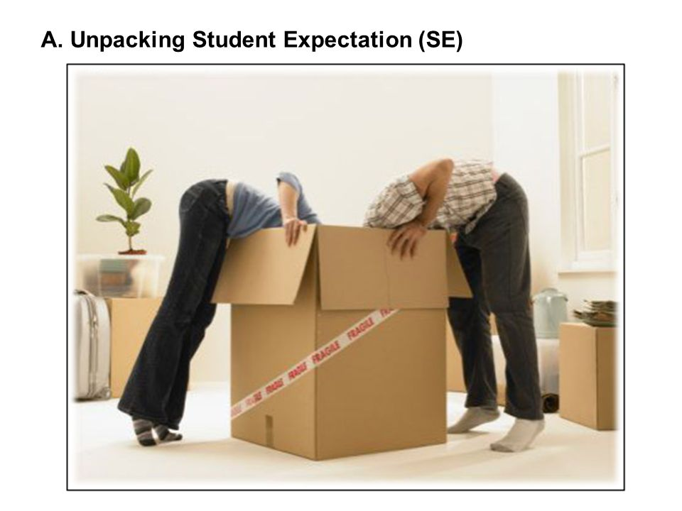 A. Unpacking Student Expectation (SE)