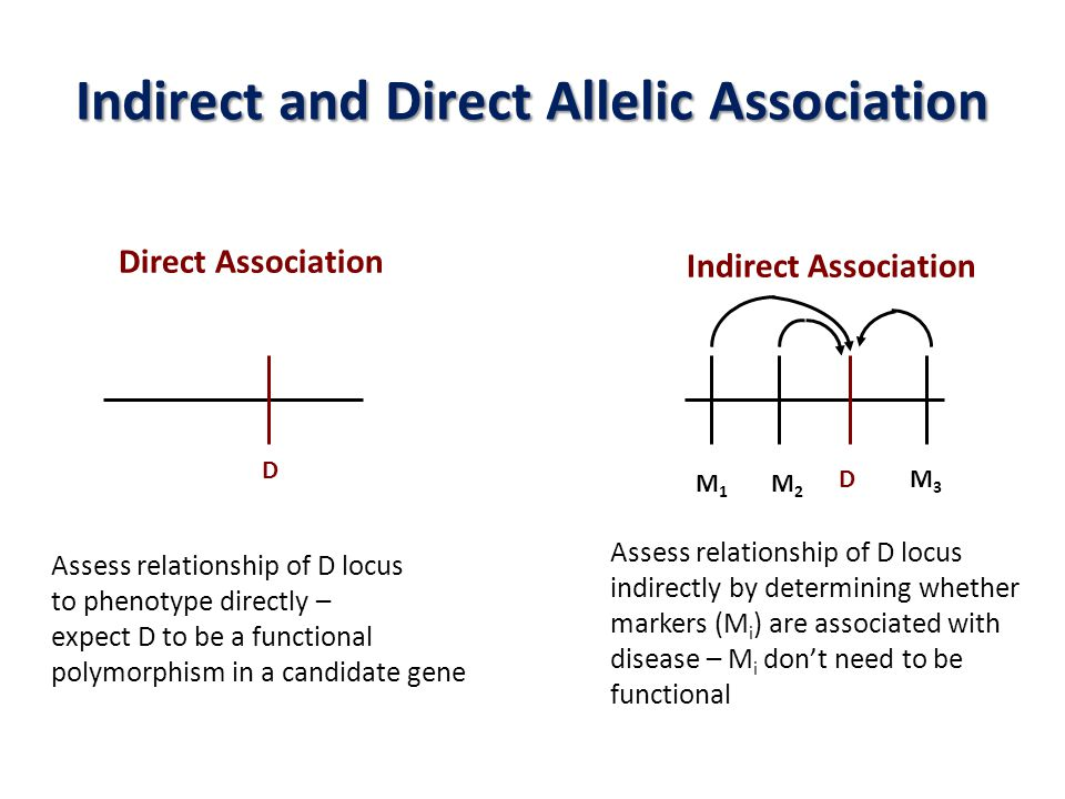 Indirect and Direct Allelic Association