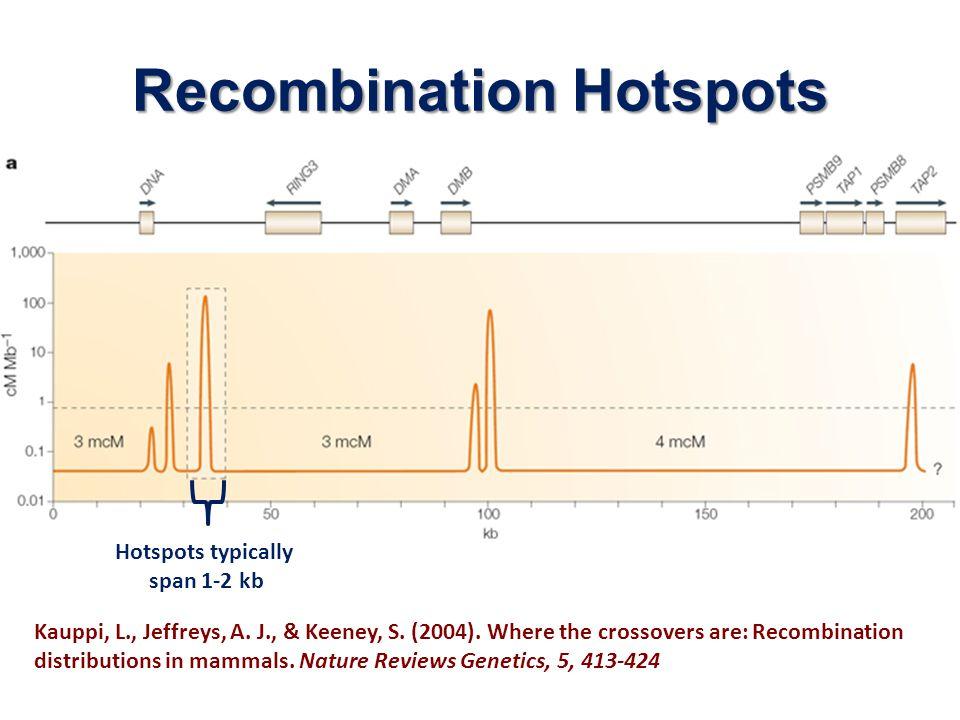 Recombination Hotspots