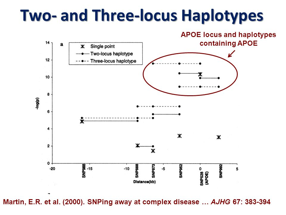 Two- and Three-locus Haplotypes