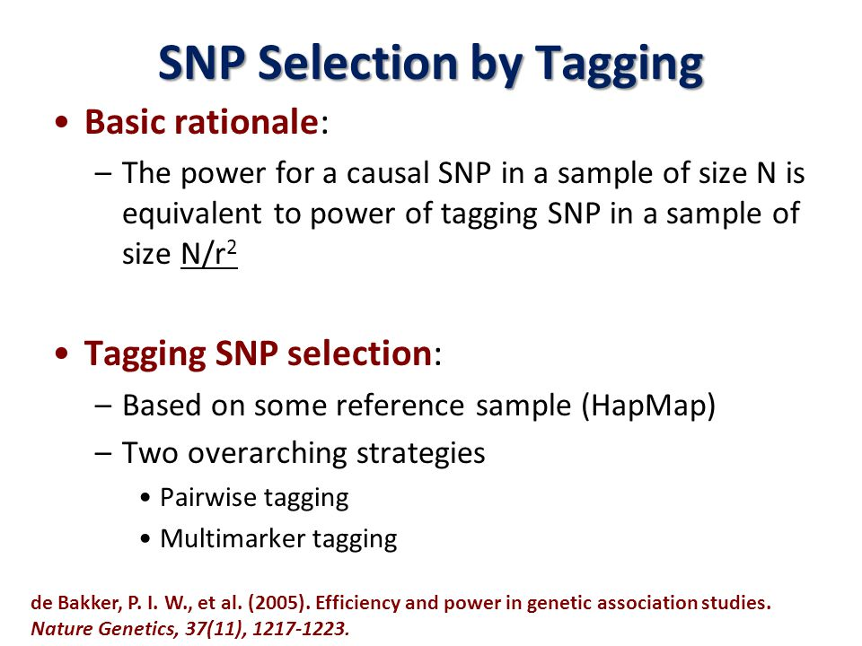 SNP Selection by Tagging