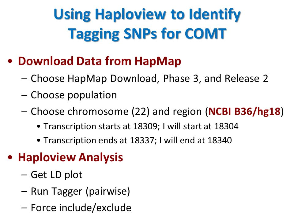 Using Haploview to Identify Tagging SNPs for COMT