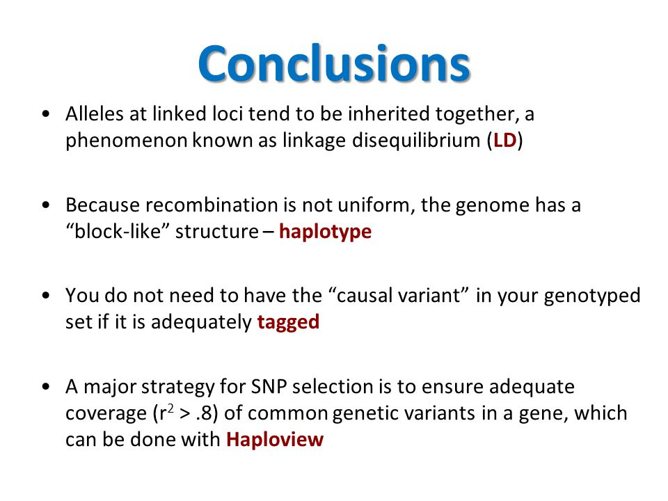 Conclusions Alleles at linked loci tend to be inherited together, a phenomenon known as linkage disequilibrium (LD)