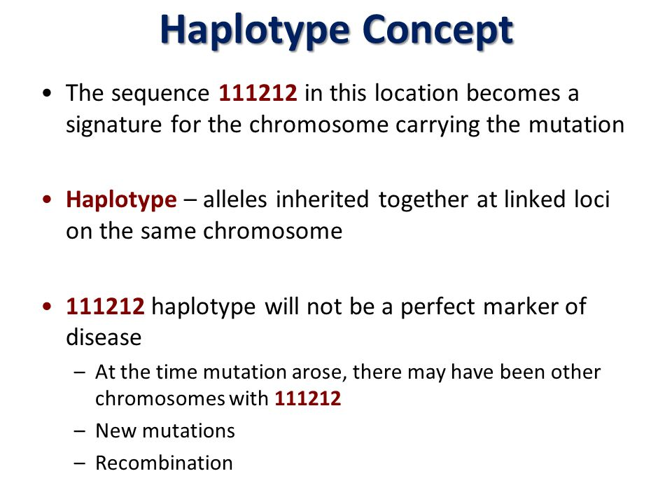 Haplotype Concept The sequence 111212 in this location becomes a signature for the chromosome carrying the mutation.