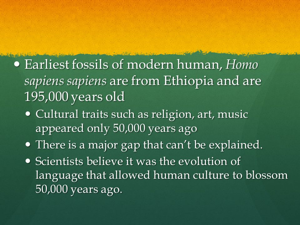 Earliest fossils of modern human, Homo sapiens sapiens are from Ethiopia and are 195,000 years old