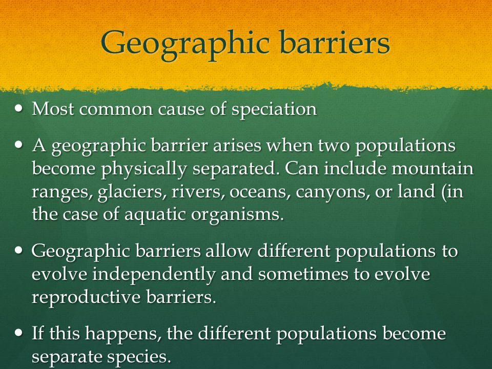 Geographic barriers Most common cause of speciation