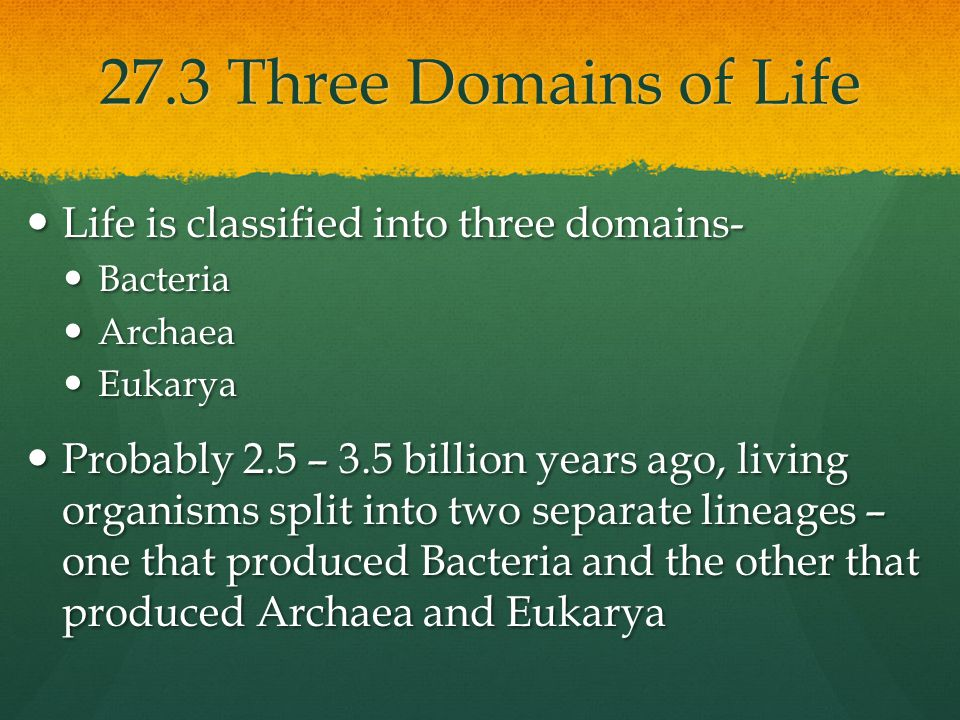 27.3 Three Domains of Life Life is classified into three domains-